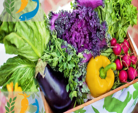 Role Of Dietitian And Nutritionist