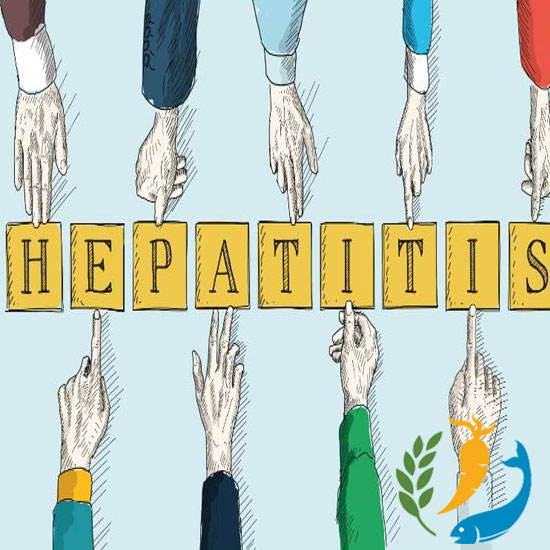 A Complete Guide on Hepatitis C