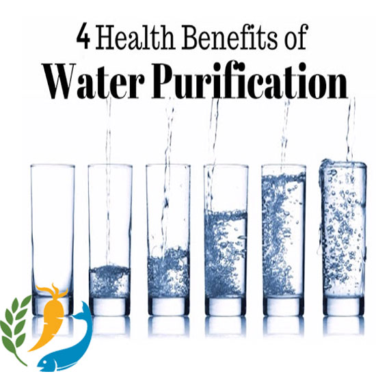 4 Health Benefits of Water Purification