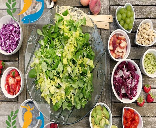 Best Benefits Of Paleo Diet