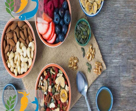 Best Foods For Paleo Diet