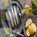 Canned Salmon and Sardines